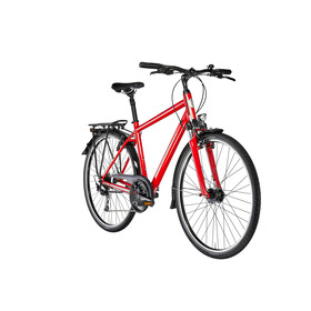 Diamant Ubari - Vélo de trekking - rouge